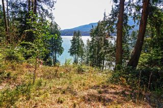 """Photo 24: DL 477 GAMBIER ISLAND: Gambier Island Land for sale in """"Cotton Bay"""" (Sunshine Coast)  : MLS®# R2616772"""