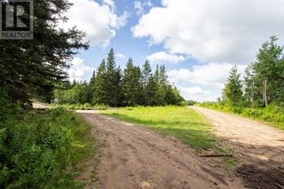 Photo 10: Lots Brooklyn RD in Midgic: Vacant Land for sale : MLS®# M136510