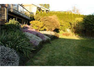 Photo 10: 2647 MARINE DR in West Vancouver: Dundarave House for sale : MLS®# V978040