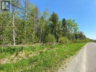 Photo 20: 5264 Rte 770 in Rollingdam: Vacant Land for sale : MLS®# NB058269