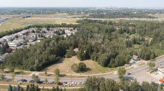 Photo 3: 40 BLACKBURN Drive W in Edmonton: Zone 55 House for sale : MLS®# E4266018
