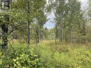 Photo 9: Lot 100 BLOCK DRIVE in 108 Mile Ranch: Vacant Land for sale : MLS®# R2623568