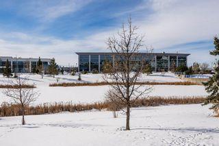 Photo 49: 410 2741 55 Street in Edmonton: Zone 29 Condo for sale : MLS®# E4229961
