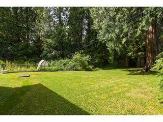 Photo 33: 26027 112 Avenue in Maple Ridge: Thornhill MR House for sale : MLS®# R2476121