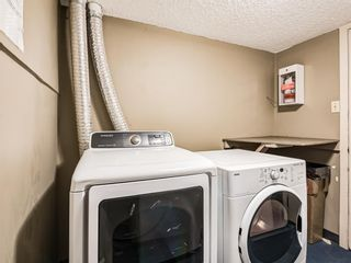 Photo 31: 202 1603 26 Avenue SW in Calgary: South Calgary Apartment for sale : MLS®# A1100163