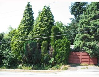 Photo 5: 1425 MOUNTAIN Highway in North Vancouver: Westlynn House for sale : MLS®# V780362