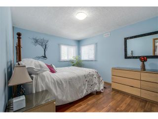 Photo 10: 109 SPRING HAVEN Mews SE: Airdrie House for sale : MLS®# C4010578