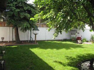 Photo 12: 252 LYSANDER Place SE in CALGARY: Lynnwood Riverglen Residential Detached Single Family for sale (Calgary)  : MLS®# C3530433