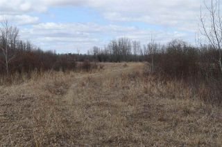 Photo 17: Twp 510 RR 33: Rural Leduc County Rural Land/Vacant Lot for sale : MLS®# E4239253