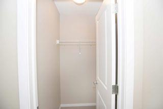 Photo 22: 4110 ALLAN Crescent in Edmonton: Zone 56 House for sale : MLS®# E4249253