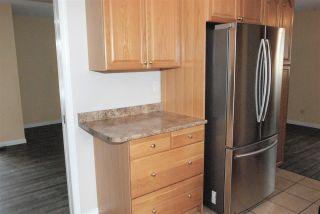 Photo 12: 11403 51 Avenue in Edmonton: Zone 15 House for sale : MLS®# E4241624