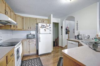 Photo 12: 8230 Saddleridge Drive NE in Calgary: Saddle Ridge Detached for sale : MLS®# A1085120