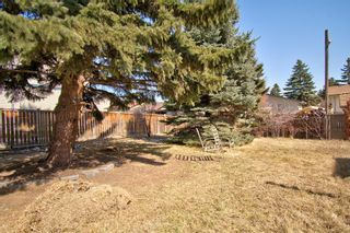 Photo 36: 14 Radcliffe Crescent SE in Calgary: Albert Park/Radisson Heights Detached for sale : MLS®# A1085056