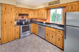 Photo 6: 2171 STIRLING AVENUE in Port Coquitlam: Glenwood PQ House for sale : MLS®# R2252731