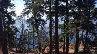 Photo 6: 4819 Cannon Cres in Pender Island: GI Pender Island Land for sale (Gulf Islands)  : MLS®# 830180
