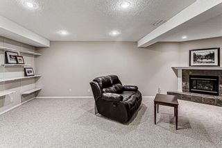 Photo 29: 139 Appletree Close SE in Calgary: Applewood Park Detached for sale : MLS®# A1022936