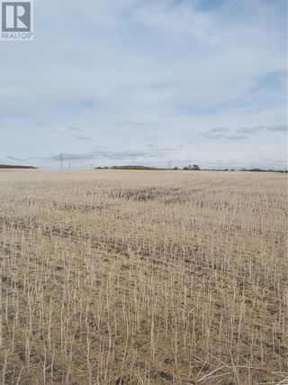 Photo 1: Rystrom Farm in Corman Park Rm No. 344: Agriculture for sale : MLS®# SK828530