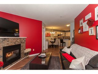 """Photo 4: 305 20896 57 Avenue in Langley: Langley City Condo for sale in """"BAYBERRY LANE"""" : MLS®# R2214120"""