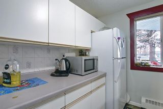 Photo 20: 110 11 Dover Point SE in Calgary: Dover Apartment for sale : MLS®# A1096781