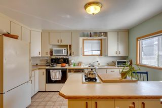 Photo 11: 1027 Rundle Crescent NE in Calgary: Renfrew Detached for sale : MLS®# A1144424