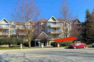 """Photo 17: 108 5556 201A Street in Langley: Langley City Condo for sale in """"Michaud Gardens"""" : MLS®# R2450874"""