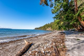 Photo 8: 3845 Shingle Spit Rd in : Isl Hornby Island House for sale (Islands)  : MLS®# 870117