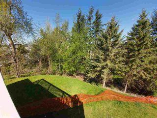 Photo 31: 31447 WINTON Avenue in Abbotsford: Poplar House for sale : MLS®# R2566181