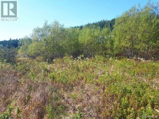 Photo 14: 637 Wellington Road in Blacks Harbour: Vacant Land for sale : MLS®# NB060608