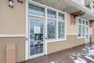 Photo 31: 119 20 Mahogany Mews SE in Calgary: Mahogany Apartment for sale : MLS®# A1124761