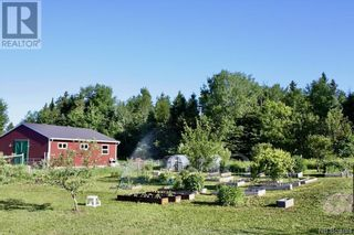 Photo 9: 799 Back Greenfield Road in Summerfield: Agriculture for sale : MLS®# NB060241