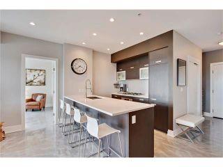 Photo 8: 702 2505 17 Avenue SW in Calgary: Richmond Condo for sale : MLS®# C4067660