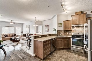 Photo 11: 421 20 Discovery Ridge Close SW in Calgary: Discovery Ridge Apartment for sale : MLS®# A1128023