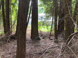 Photo 5: Lot 51 Forest Dr.: Blind Bay Land Only for sale (Shuswap)  : MLS®# 10232622
