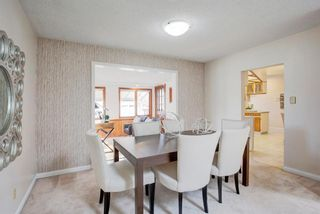 Photo 15: 9839 7 Street SE in Calgary: Acadia Detached for sale : MLS®# A1145363