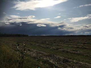 Photo 4: HWY 39 RR 34: Rural Leduc County Rural Land/Vacant Lot for sale : MLS®# E4235214