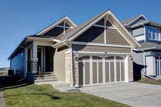 Main Photo: 94 Magnolia Terrace SE in Calgary: Mahogany Detached for sale : MLS®# A1154016