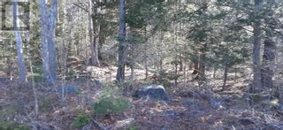 Photo 7: Lot Tupper Street in Milton: Vacant Land for sale : MLS®# 202109601