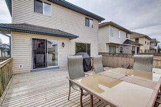 Photo 41: 140 Douglas Ridge Green SE in Calgary: Douglasdale/Glen Detached for sale : MLS®# A1114470