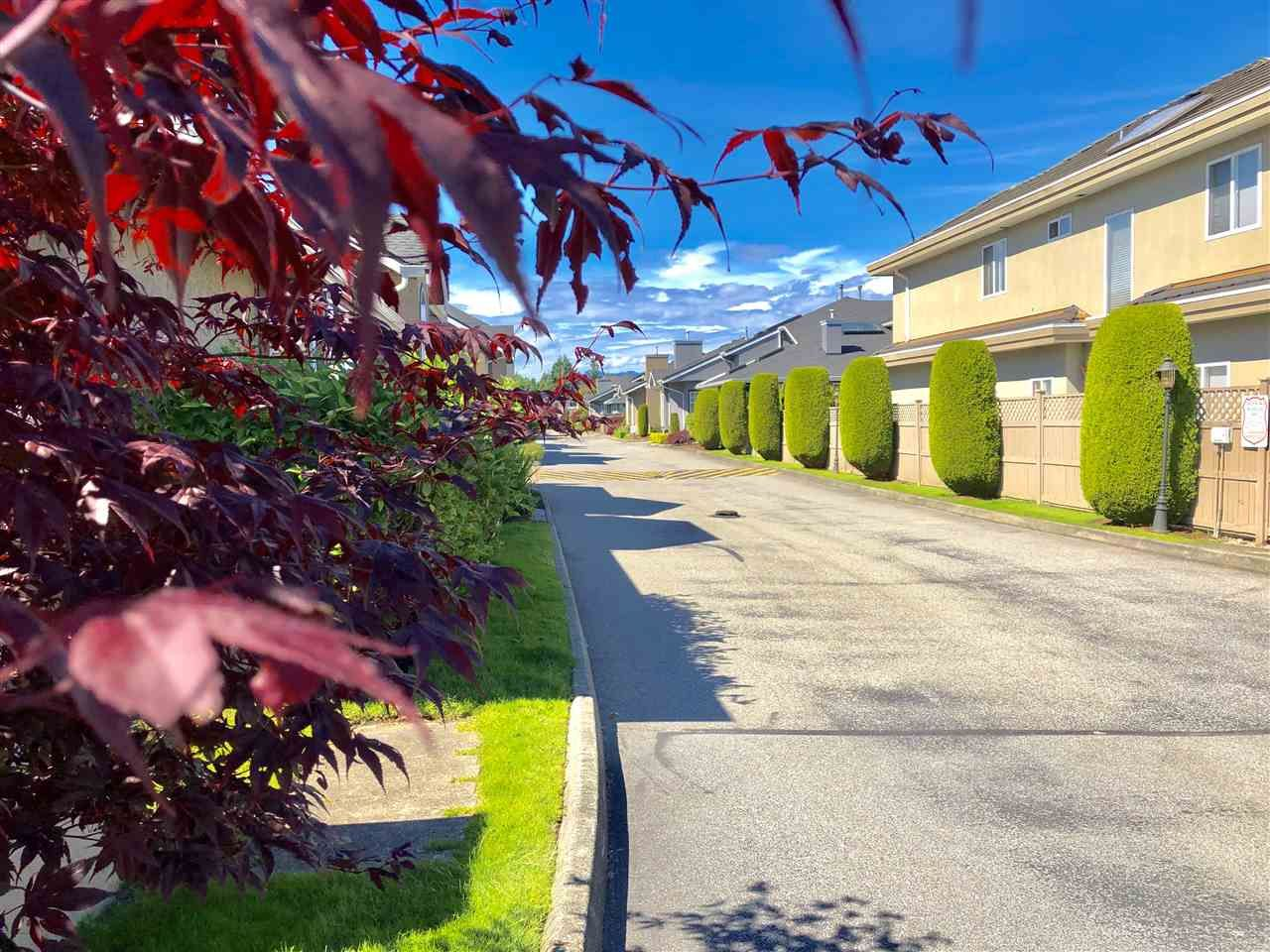 Main Photo: 16 9311 DAYTON AVENUE in : Garden City Townhouse for sale : MLS®# R2379701