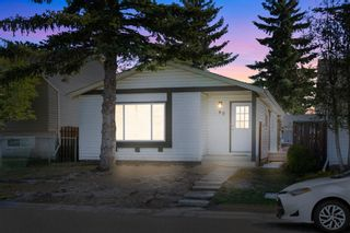 Main Photo: 40 Faldale Close NE in Calgary: Falconridge Detached for sale : MLS®# A1142908