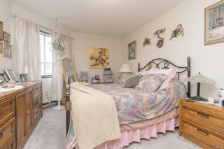 Photo 17: 312 69 Gorge Rd in : SW West Saanich Condo for sale (Saanich West)  : MLS®# 884333