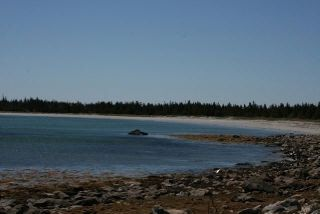 Photo 10: West Sable Road in Little Harbour: 407-Shelburne County Vacant Land for sale (South Shore)  : MLS®# 201911281