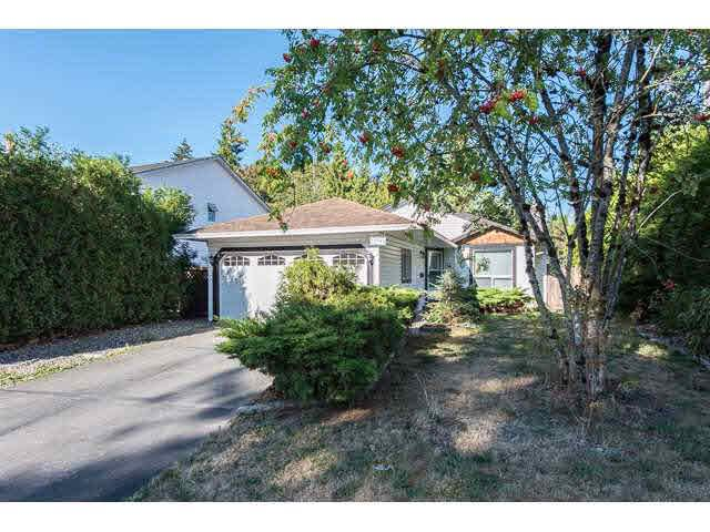 "Main Photo: 11995 238B Street in Maple Ridge: Cottonwood MR House for sale in ""Cottonwood"" : MLS®# V1140226"