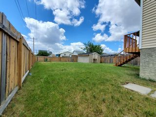Photo 4: 23 Erin Meadows Court SE in Calgary: Erin Woods Detached for sale : MLS®# A1124454