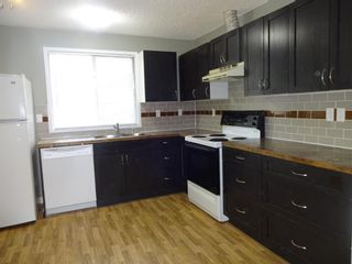 Photo 2: 164 Dovercliffe Way SE in Calgary: Dover Detached for sale : MLS®# A1116504