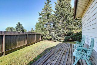 Photo 33: 47 Falworth Place NE in Calgary: Falconridge Detached for sale : MLS®# A1139441