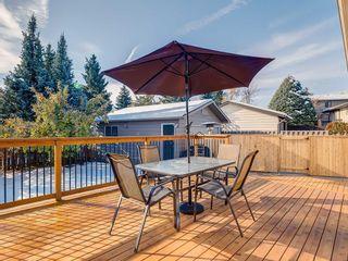 Photo 47: 536 BROOKMERE Crescent SW in Calgary: Braeside Detached for sale : MLS®# C4221954