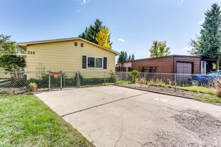 Main Photo: 216 Huntwell Court NE in Calgary: Huntington Hills Detached for sale : MLS®# A1145066