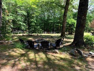 Photo 24: 628 Molega Lake Road in Molega Lake: 405-Lunenburg County Residential for sale (South Shore)  : MLS®# 202120483