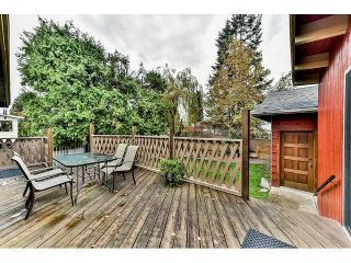 Photo 17: 13043 100A Avenue in Surrey: Cedar Hills House for sale (North Surrey)  : MLS®# R2013384